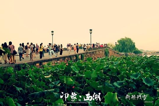 杭州、苏州、周庄、南京 四日游
