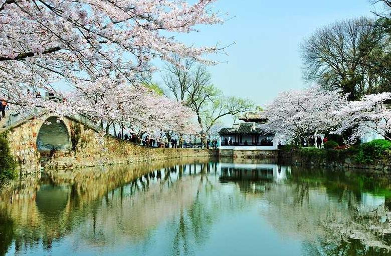 上海、杭州、乌镇、苏州、周庄五日游